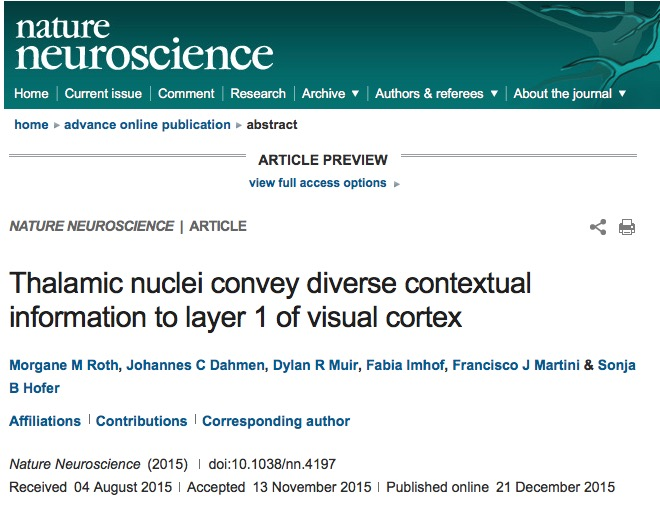 Roth M. M. et al. Thalamic nuclei convey diverse contextual information to layer 1 of visual cortex //Nature Neuroscience. – 2015