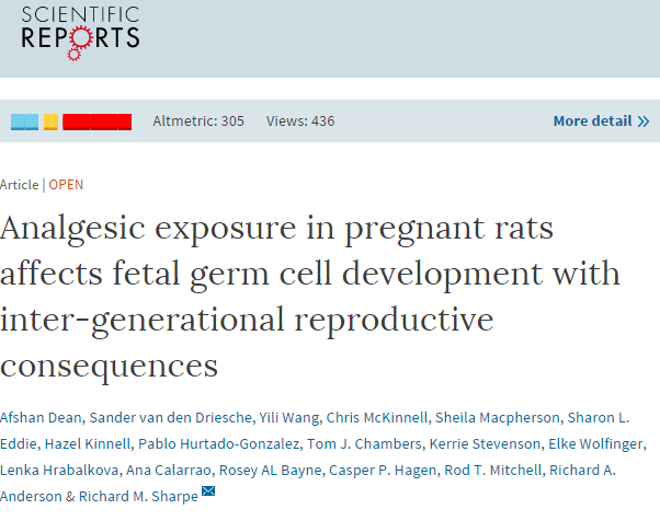 Analgesic exposure in pregnant rats affects fetal germ cell development with inter-generational reproductive consequences ©