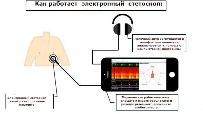 Как работает  электронный  стетоскоп: