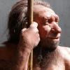 American Journal of Physical Anthropology, неандертальцы