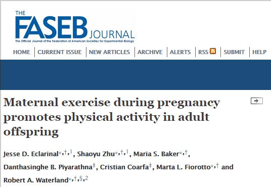 физическая активность, The FASEB Journal