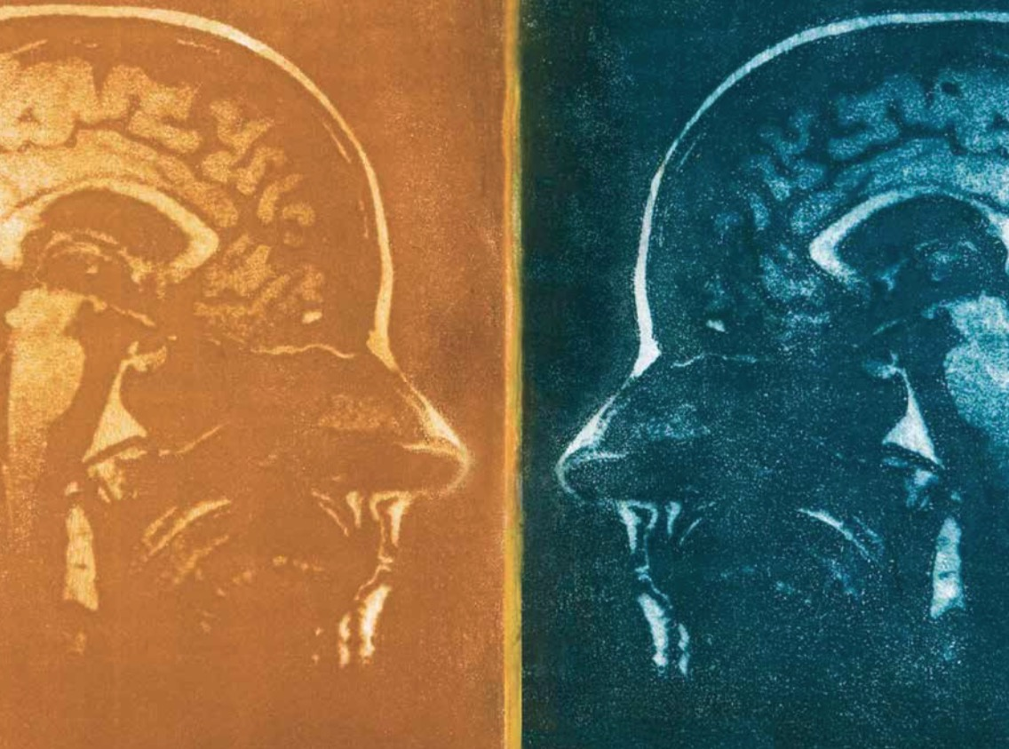 головной мозг, мужчина, женщина, Scientific Reports