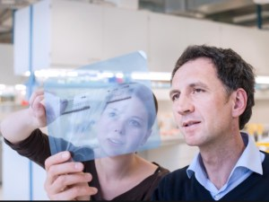 Ученые обнаружили важный механизм защитных сил организма от грибковой инфекции.