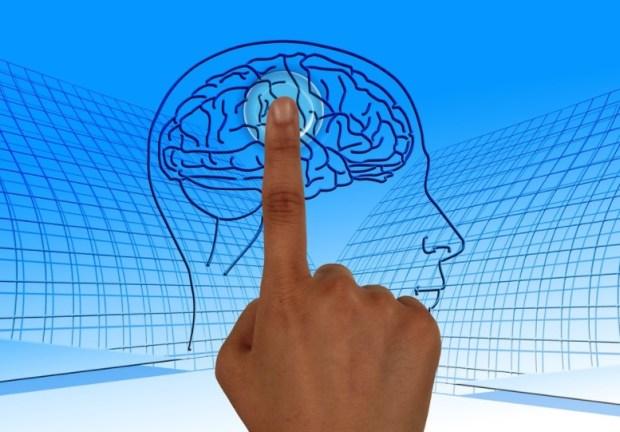 Человеческий мозг: непознанный биологический компьютер