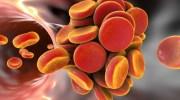 антикоагулянты, тромбообразование