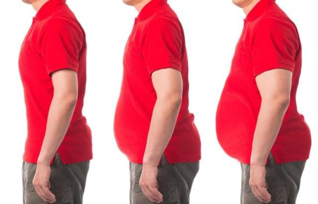Висцеральный жир, рак
