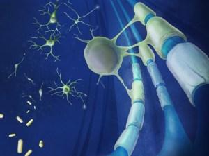 рассеянный склероз, аллергия, клемастин фумарат