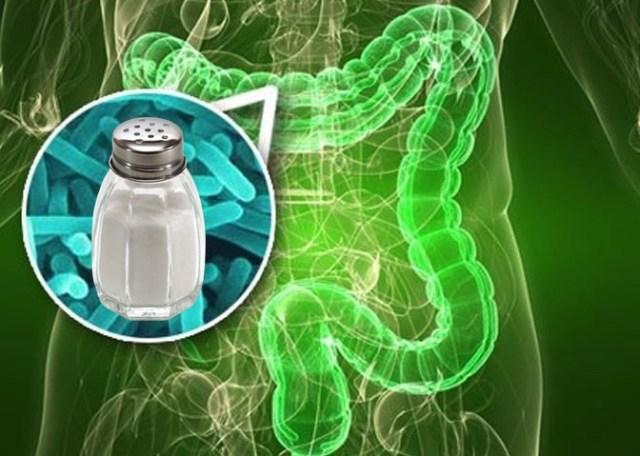 кишечные бактерии, гипертония