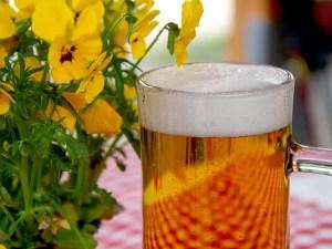алкоголь, пиво