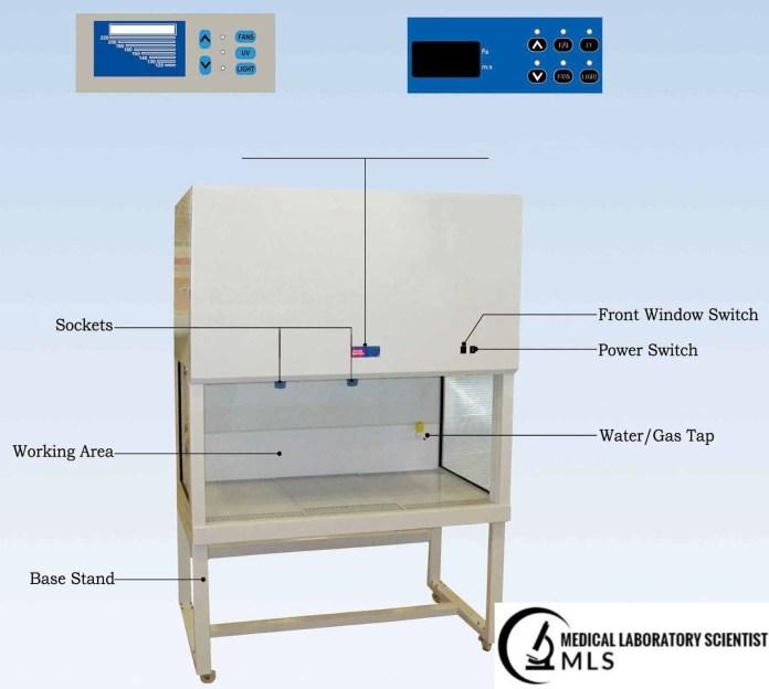 Laminar Flow Clean-Air Safety Cabinet