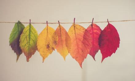 Urine Color Changes: Causes, Diagnosis, Treatment and Risk Factors