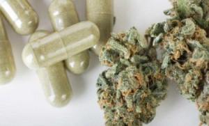 cannabis-oil-pills-300x181