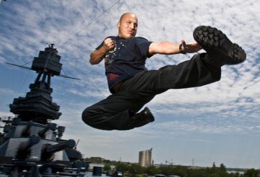 Hollywood Stuntman
