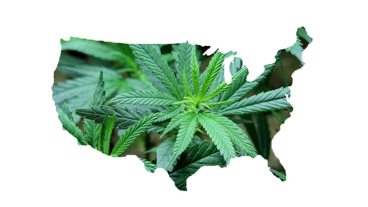Adult Use of Marijuana Act Proposition 64