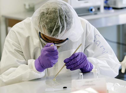 Scientist researching cannabis