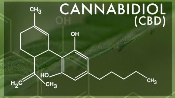 Cannabidiol molecular structure