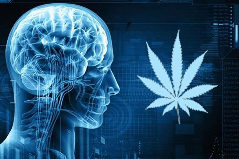 Psychosis and CBD