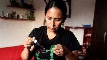 Peru mother cannabis