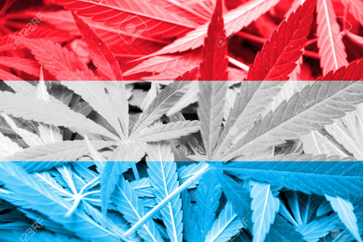 medical cannabis Luxembourg