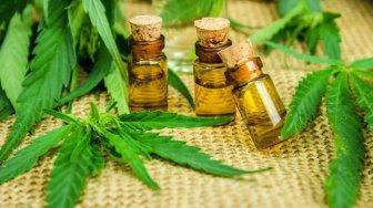 medication cannabis