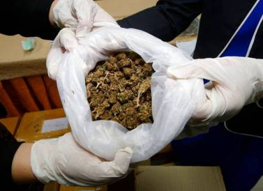 cannabis in thailand bad, police marijuana