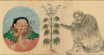 old medical marijuana image