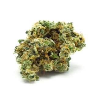 Legal CBD cannabis bud