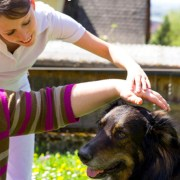 Emotional Support Dog, Therapy Dog, Facility Dog, or Psychiatric Service Dog. What's the difference?