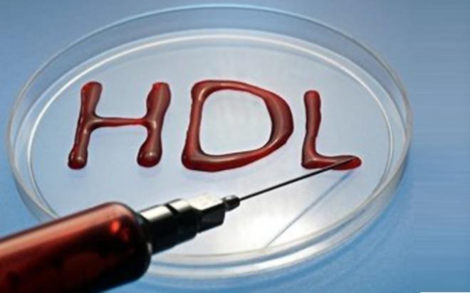 hdl.medium.jpg