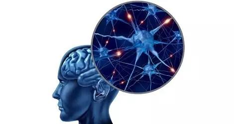 Understand-Neurodegenerative-Diseases