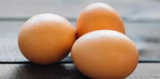 benefits of eggs