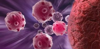delay cancer development