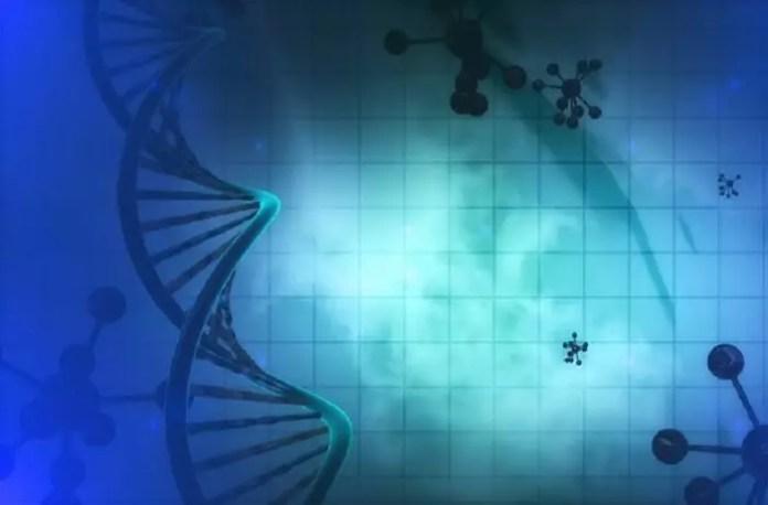 molecular changes in schizophrenia