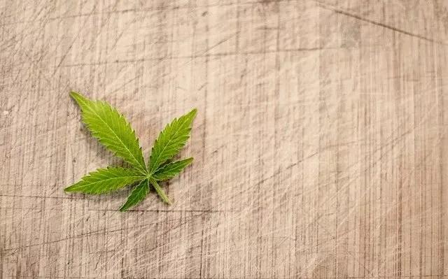 health risks of cannabis edibles