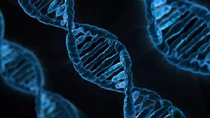 डीएनए, जीन