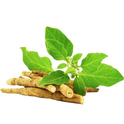 Ashwagandha For Health – Definition, Benefits, Usages, Dosages, Side Effects