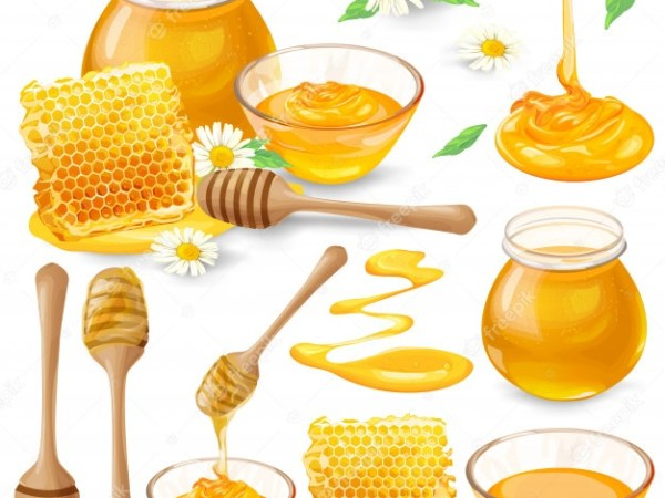 Honey for Weight Loss – Benefits, Uses, Risks
