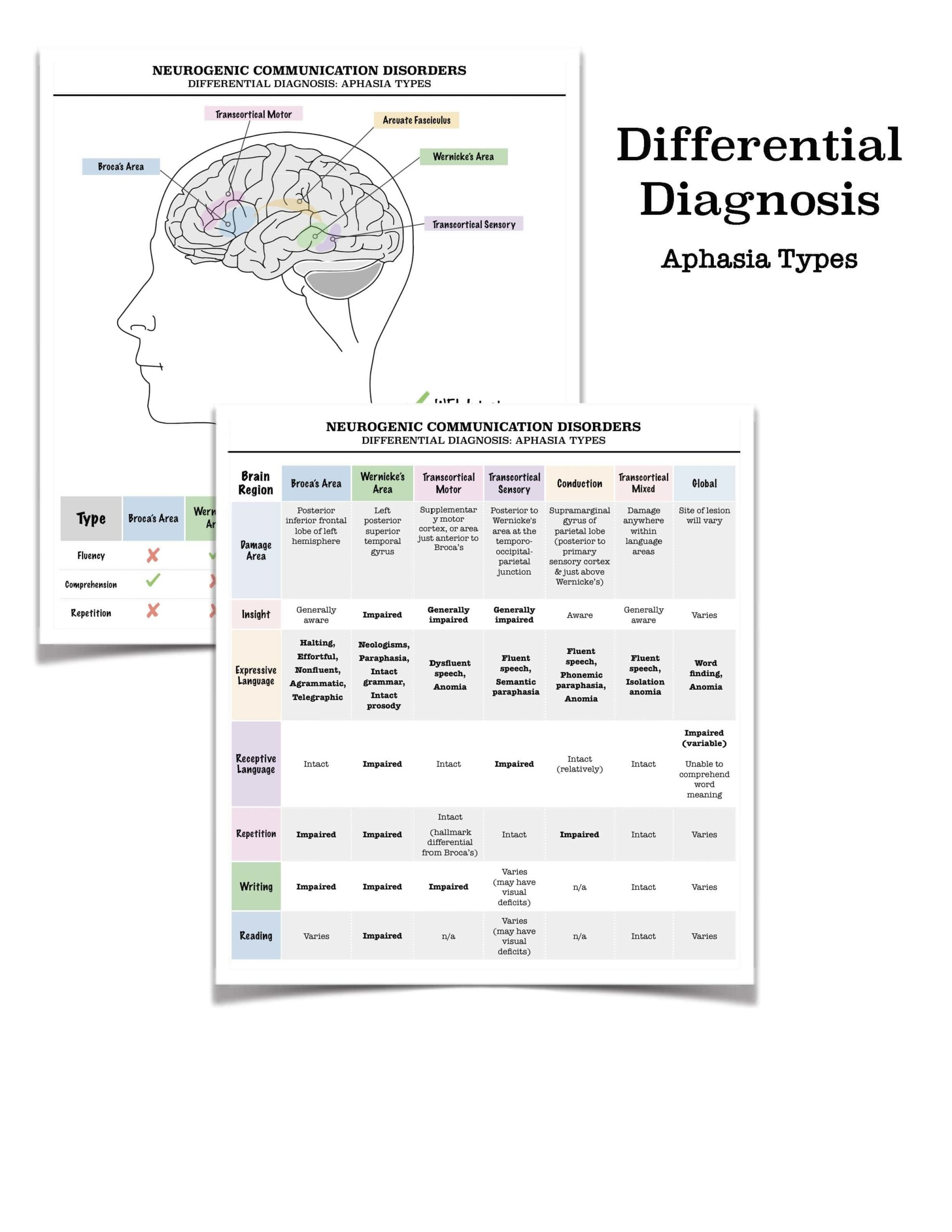 Handout Aphasia Differential Diagnosis Chart