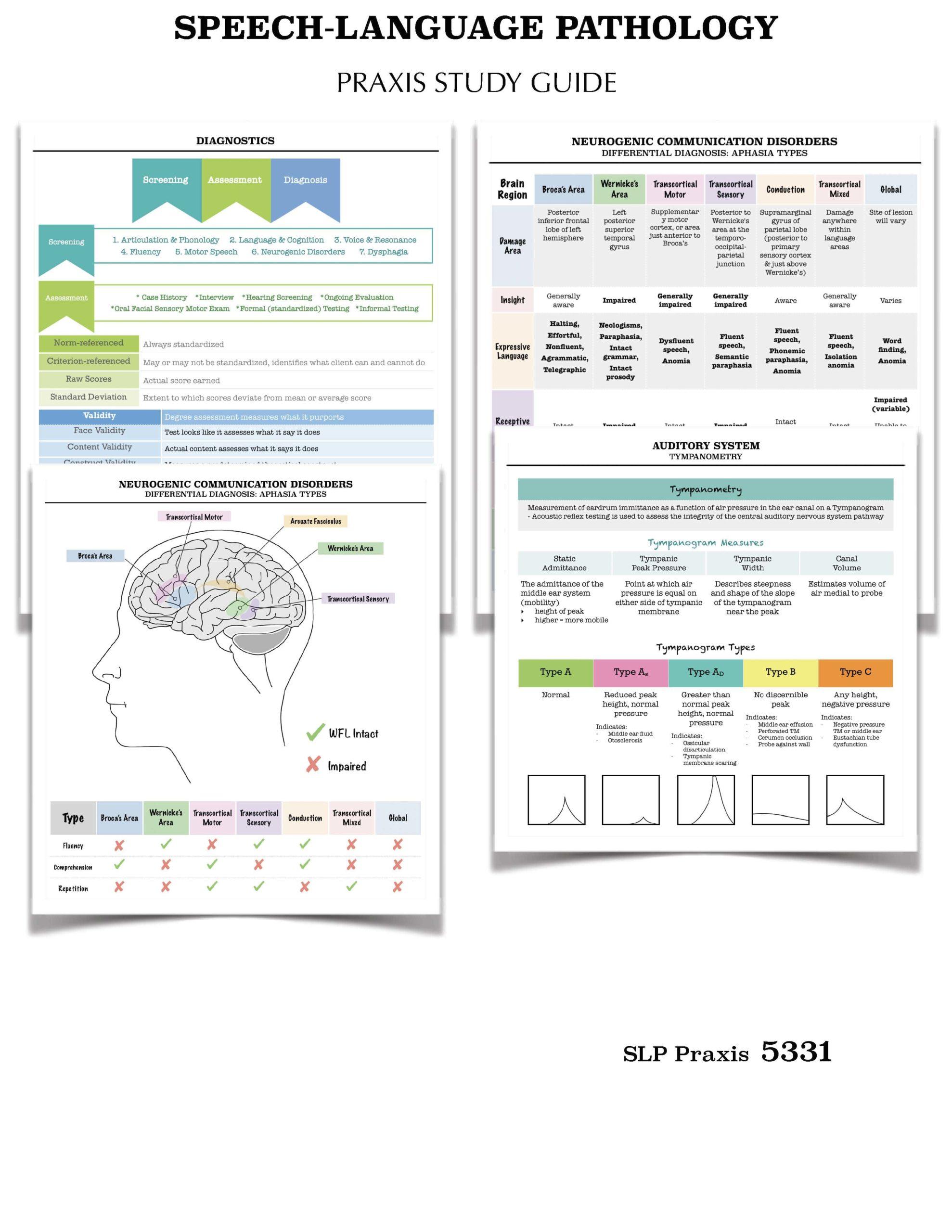 Speech Language Pathology Slp Praxis Study Guide