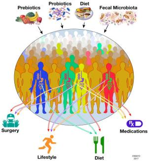 The Human Microbiome