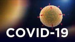COVID-19 and the Coronavirus