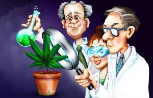 cannabis scientist cartoon