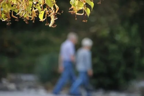 seniors-walking Important Facts About Medicare Open Enrollment