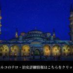 トルコ(観光地イスタンブール)への旅行・観光時に病気になった場合の医療機関情報