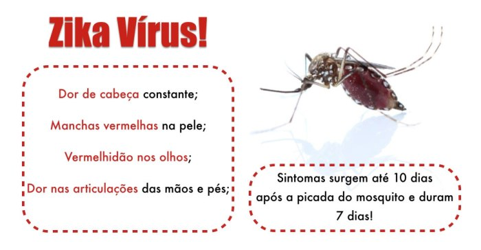 for-web-sintomas-da-zika