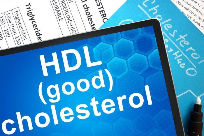 Colesterol HDL - Bom colesterol