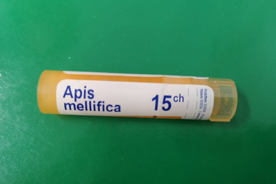 apis-mellifica-dr-michel-mallard-omeopata