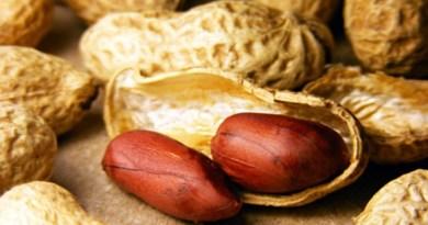 Se puede prevenir la alergia al maní cuando se consume temprano en la vida