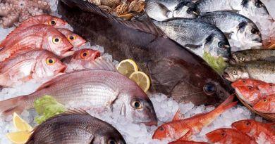 El consumo de pescado omega 3 que puede que prevenir el cáncer colorectal