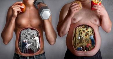 La dieta que consumimos es determinante en la forma en la que se expresan nuestros genes | Por: @linternista